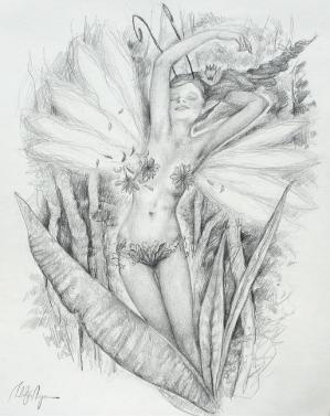 Drawings of fairies 6