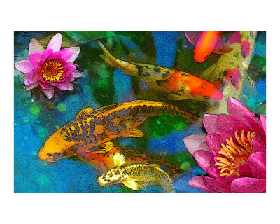 Koi drawings paintings images for Koi fish pond drawing