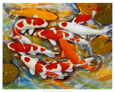 Koi Fish Drawings and Paintings - Buy at Art.com