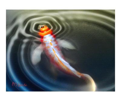 Koi Fish Drawings - Buy at Art.com
