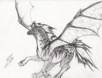 Pencil Drawings Dragons Pen And Color