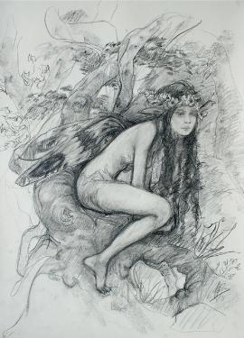 Drawings of fairies 2