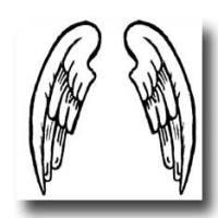 A pair of Angel wings drawings