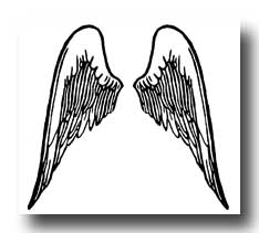 A pair of Angel wings drawing