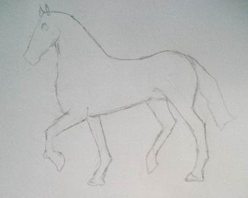 Line sketching in pencil drawing of a horse