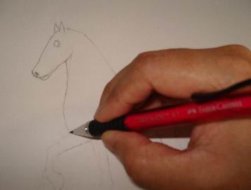 A horse sketch 5