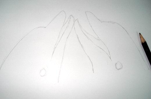Draw dolphins sketch using a H or HB pencil