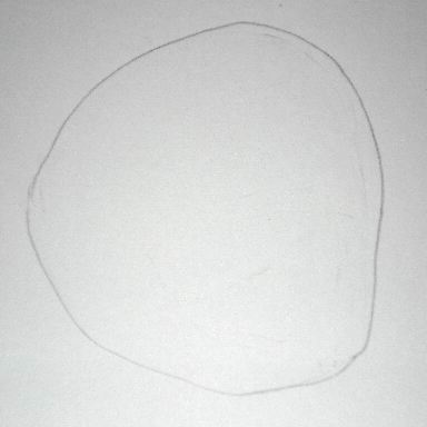 Pencil drawing of a skull - Sketch 1