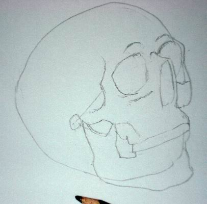 Pencil drawing of a skull - Sketch 4