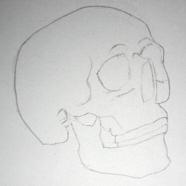 Pencil drawing of a skull - Sketch 5